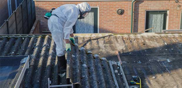 Prevent Serious Illness – Opt for Prompt, Professional Mold Cleanup and Asbestos Removal Services